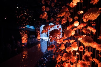 Crisantemos iluminados con luz naranja colgando de hilos en el pasillo