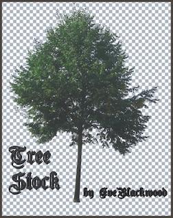 de alta definición árboles ps pinceles, incluyendo el archivo de la capa de psd