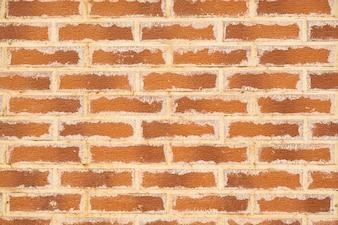 Detalle de la pared de edad macro de naranja