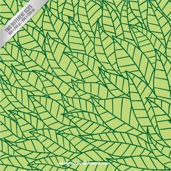 Dibujado a mano estampado de hojas
