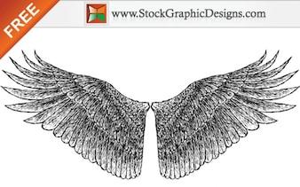 Dibujado a mano libre Alas vectoriales