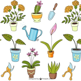 Dibujos de plantas