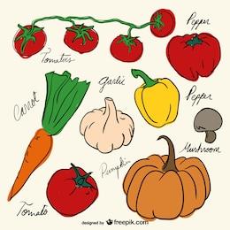 Dibujos de verduras decorativos