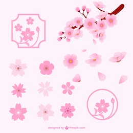 Diferentes flores de cerezo