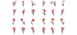 diseños Logo de Floristerias y salones de belleza