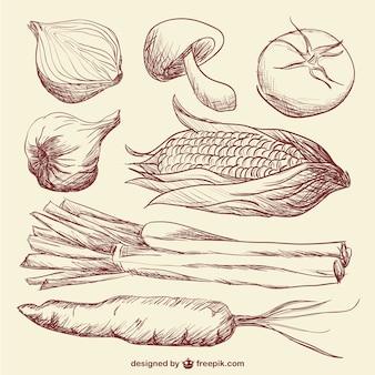 Dibujos realistas de varias verduras