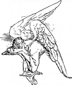 duelo ángel