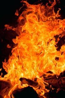 El fuego la naturaleza