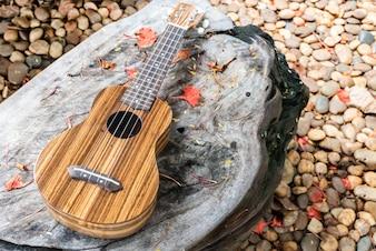 El ukelele en la mesa de madera