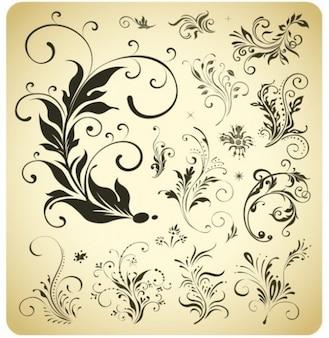 Elementos florales vintage decorativos