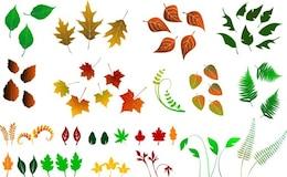 enorme colección de hojas de vectores