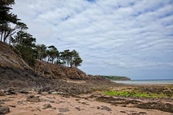 Escabroso paisaje playa hdr