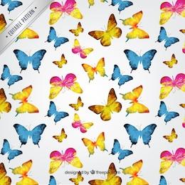 Estampado de mariposas Acuarela
