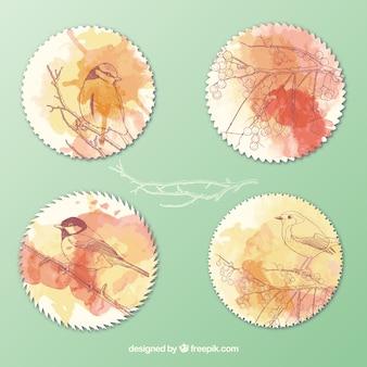 Etiquetas con pájaros pintados a mano