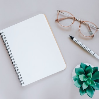 Flat lay of minimal workspace escritorio con portátil, gafas y plantas verdes, copia espacio