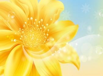 Flor de oro. fondo delicado.