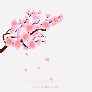 Flores de cerezo rosadas