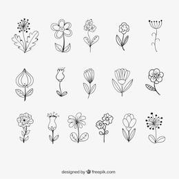 Flores esbozadas
