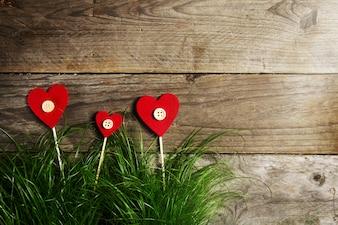 Flores hermosas de los corazones en la hierba verde, el día de tarjeta del día de San Valentín o el concepto del amor.
