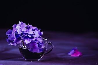 Flores lilas en una jarra de cristal