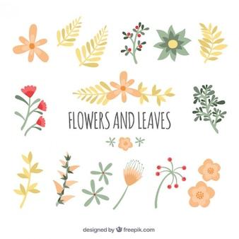 Flores lindas y hojas
