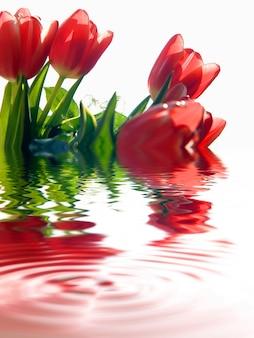 Flores rojas metidas en agua
