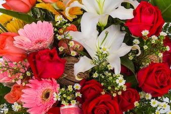 Flores rosas y blancas de cerca