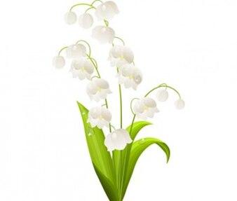flores verdes del resorte plano en blanco