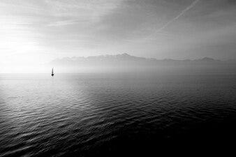 Flotando en las olas suaves