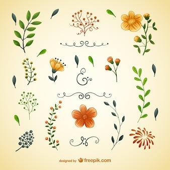 Ilustraciones de flores y hojas