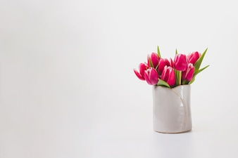 Fondo blanco con flores bonitas