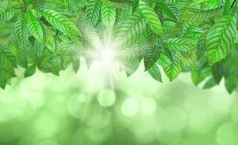 Fondo bokeh de hojas verdes