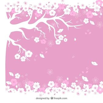 Fondo de árbol del cerezo en flor