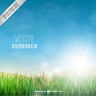 Fondo de bienvenido el verano con un campo