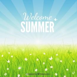 Fondo de bienvenido en verano