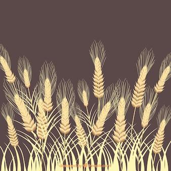 Fondo de espigas de trigo