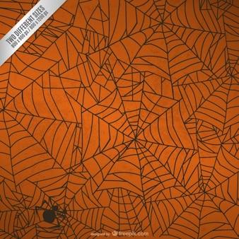 Fondo de Halloween con tela de araña