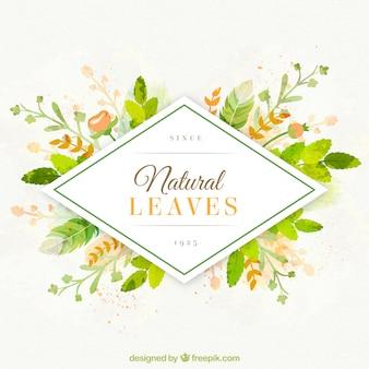 Fondo de hojas naturales pintadas a mano