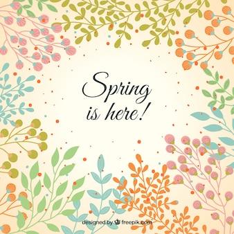 Fondo de la vegetación de primavera
