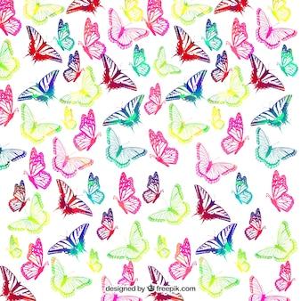 Fondo de mariposas de colores