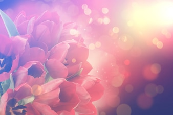 Fondo floral colorido con efecto bokeh