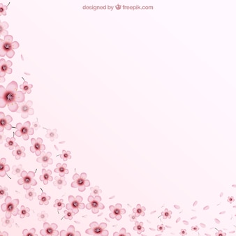 Fondo rosado con flores de cerezo