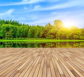 Forma de jardín de parques de verano bordo al aire libre