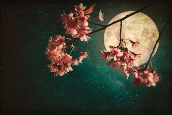 Foto de estilo antiguo y vintage - Hermosa flor de cerezo rosa (flores de sakura) en la noche de los cielos con luna llena y estrellas de la vía láctea.
