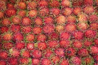 Frutos rosas con pelos verdes