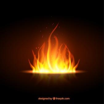 Fuego brillante