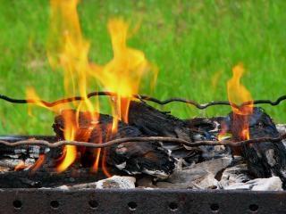 fuego parrilla