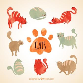 Gatos pintados a mano