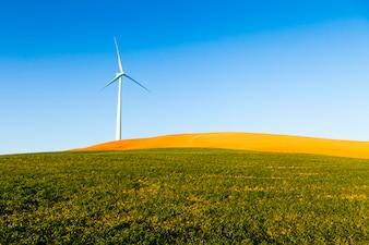 Generador eólico en un campo verde