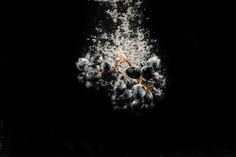 Gran racimo de uva negra cae sobre fondo negro